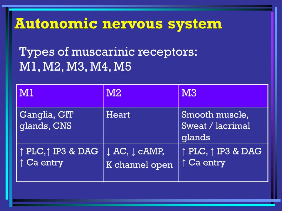 Autonomic nervous system M1M2M3 Ganglia, GIT glands, CNS HeartSmooth muscle, Sweat / lacrimal glands ↑ PLC, ↑ IP3 & DAG ↑ Ca entry ↓ AC, ↓ cAMP, K channel open ↑ PLC, ↑ IP3 & DAG ↑ Ca entry Types of muscarinic receptors: M1, M2, M3, M4, M5