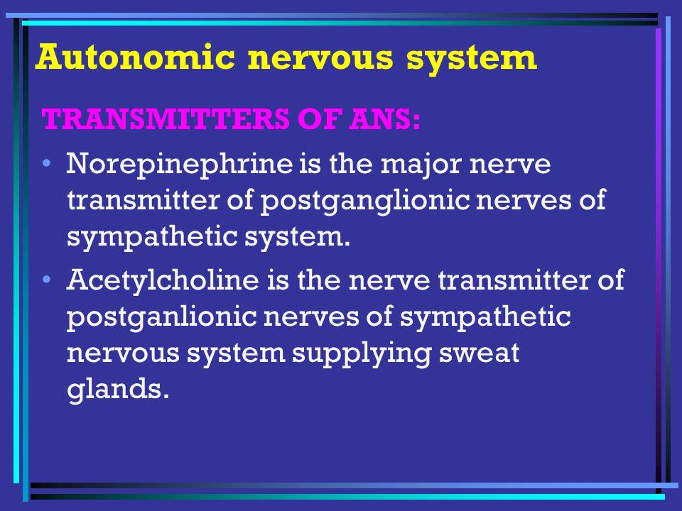 Autonomic nervous system Nicotinic action of Acetylcholine : Autonomic ganglia ( N N ) – both parasympathetic and sympathetic are stimulated.
