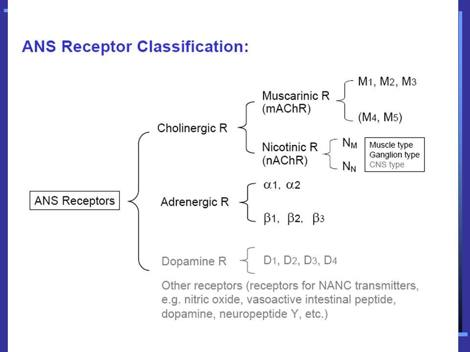 CHOLINERGIC AGONISTS A.CHOLINE ESTERS – Acetylcholine, Methacholine, Carbachol, Bethanechol B.CHOLINOMIMETIC ALKALOIDS – Pilocarpine C.ANTICHOLINESTERASES