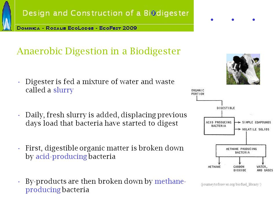 Anaerobic Digestion in a Biodigester Digester is fed a mixture of water and waste called a slurry Daily, fresh slurry is added, displacing previous da