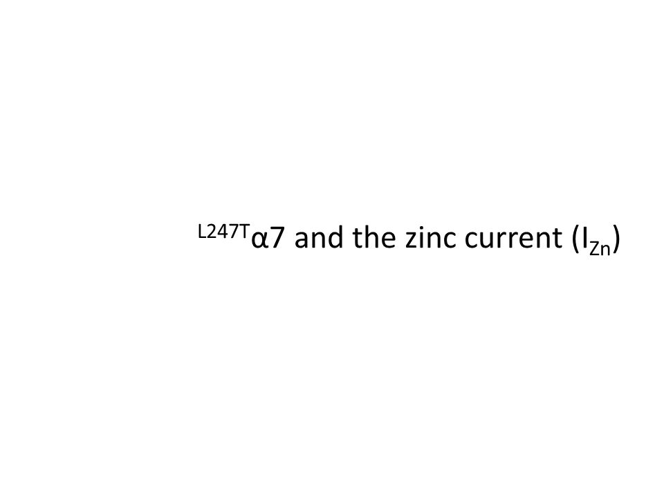 L247T α7 and the zinc current (I Zn )