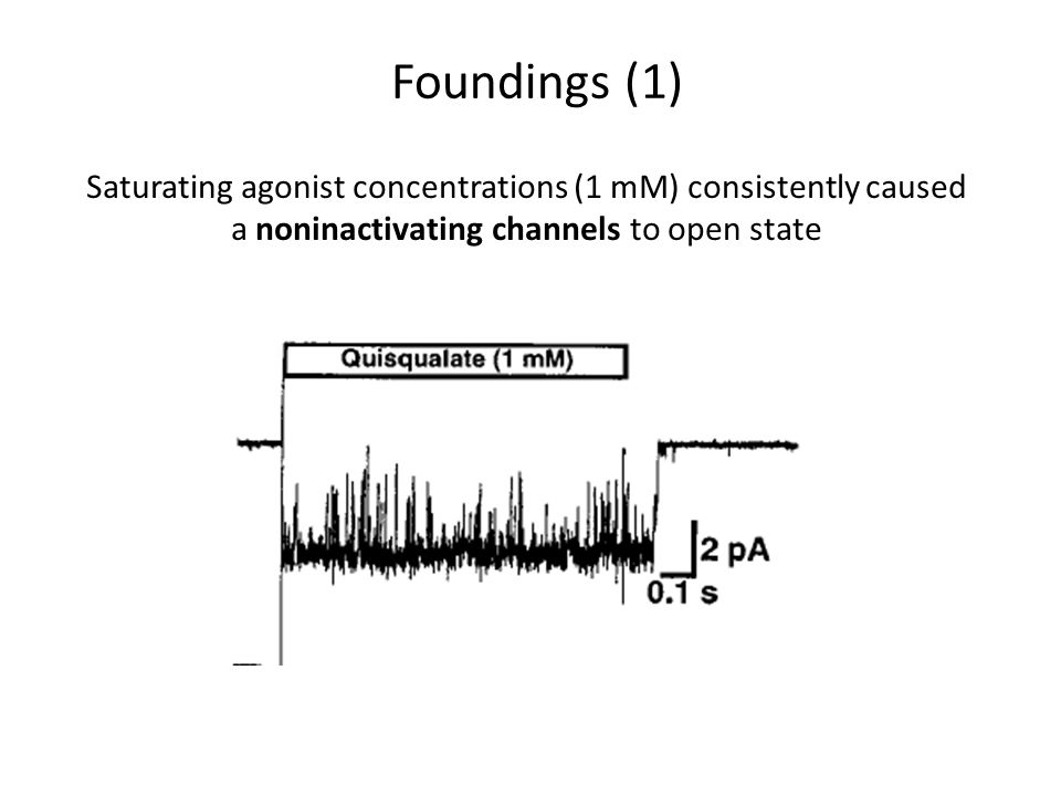 Saturating agonist concentrations (1 mM) consistently caused a noninactivating channels to open state Foundings (1)