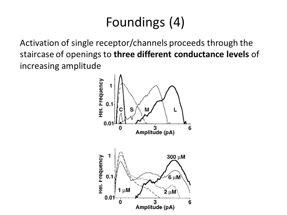 Activation of single receptor/channels proceeds through the staircase of openings to three different conductance levels of increasing amplitude Foundings (4)