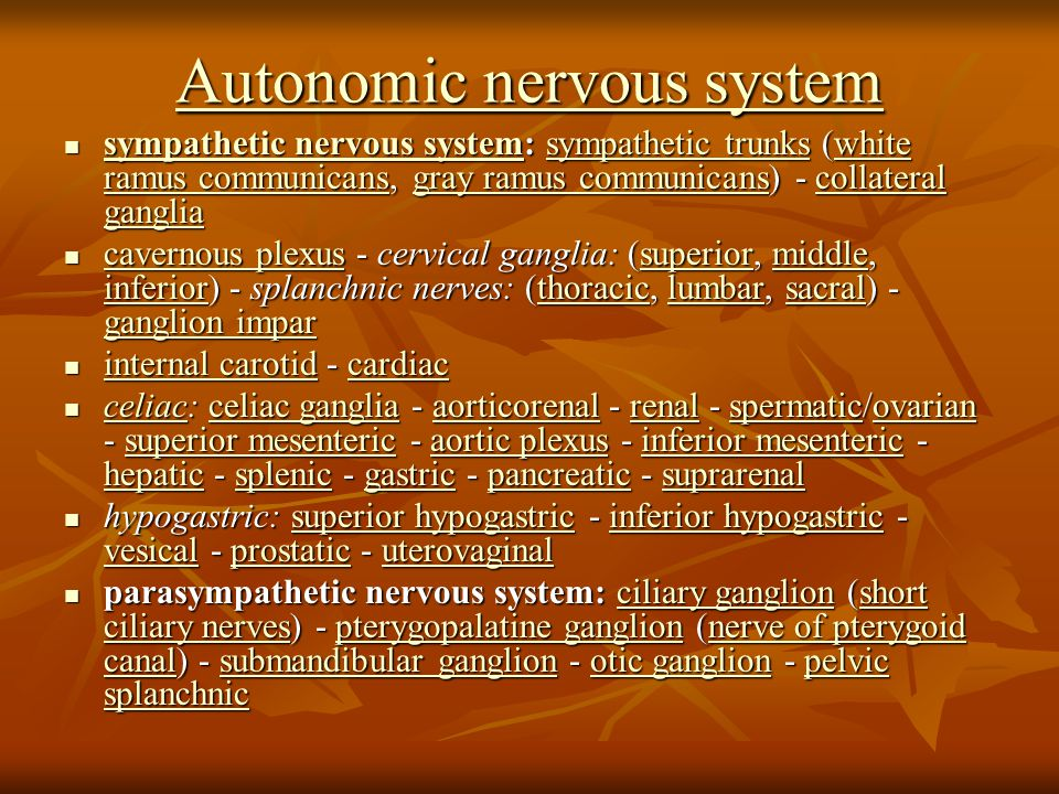 Autonomic nervous system Autonomic nervous system sympathetic nervous system: sympathetic trunks (white ramus communicans, gray ramus communicans) - collateral ganglia sympathetic nervous system: sympathetic trunks (white ramus communicans, gray ramus communicans) - collateral ganglia sympathetic nervous systemsympathetic trunkswhite ramus communicansgray ramus communicanscollateral ganglia sympathetic nervous systemsympathetic trunkswhite ramus communicansgray ramus communicanscollateral ganglia cavernous plexus - cervical ganglia: (superior, middle, inferior) - splanchnic nerves: (thoracic, lumbar, sacral) - ganglion impar cavernous plexus - cervical ganglia: (superior, middle, inferior) - splanchnic nerves: (thoracic, lumbar, sacral) - ganglion impar cavernous plexussuperiormiddle inferiorthoraciclumbarsacral ganglion impar cavernous plexussuperiormiddle inferiorthoraciclumbarsacral ganglion impar internal carotid - cardiac internal carotid - cardiac internal carotidcardiac internal carotidcardiac celiac: celiac ganglia - aorticorenal - renal - spermatic/ovarian - superior mesenteric - aortic plexus - inferior mesenteric - hepatic - splenic - gastric - pancreatic - suprarenal celiac: celiac ganglia - aorticorenal - renal - spermatic/ovarian - superior mesenteric - aortic plexus - inferior mesenteric - hepatic - splenic - gastric - pancreatic - suprarenal celiac gangliaaorticorenalrenalspermaticovariansuperior mesentericaortic plexusinferior mesenteric hepaticsplenicgastricpancreaticsuprarenal celiac gangliaaorticorenalrenalspermaticovariansuperior mesentericaortic plexusinferior mesenteric hepaticsplenicgastricpancreaticsuprarenal hypogastric: superior hypogastric - inferior hypogastric - vesical - prostatic - uterovaginal hypogastric: superior hypogastric - inferior hypogastric - vesical - prostatic - uterovaginalsuperior hypogastricinferior hypogastric vesicalprostaticuterovaginalsuperior hypogastricinferior hypogastric vesicalprostaticuterovaginal parasympathetic nervous system: ciliary ganglion (short ciliary nerves) - pterygopalatine ganglion (nerve of pterygoid canal) - submandibular ganglion - otic ganglion - pelvic splanchnic parasympathetic nervous system: ciliary ganglion (short ciliary nerves) - pterygopalatine ganglion (nerve of pterygoid canal) - submandibular ganglion - otic ganglion - pelvic splanchnicciliary ganglionshort ciliary nervespterygopalatine ganglionnerve of pterygoid canalsubmandibular ganglionotic ganglionpelvic splanchnicciliary ganglionshort ciliary nervespterygopalatine ganglionnerve of pterygoid canalsubmandibular ganglionotic ganglionpelvic splanchnic