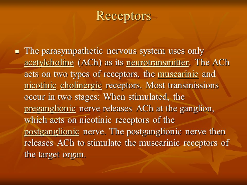 Receptors The parasympathetic nervous system uses only acetylcholine (ACh) as its neurotransmitter. The ACh acts on two types of receptors, the muscar