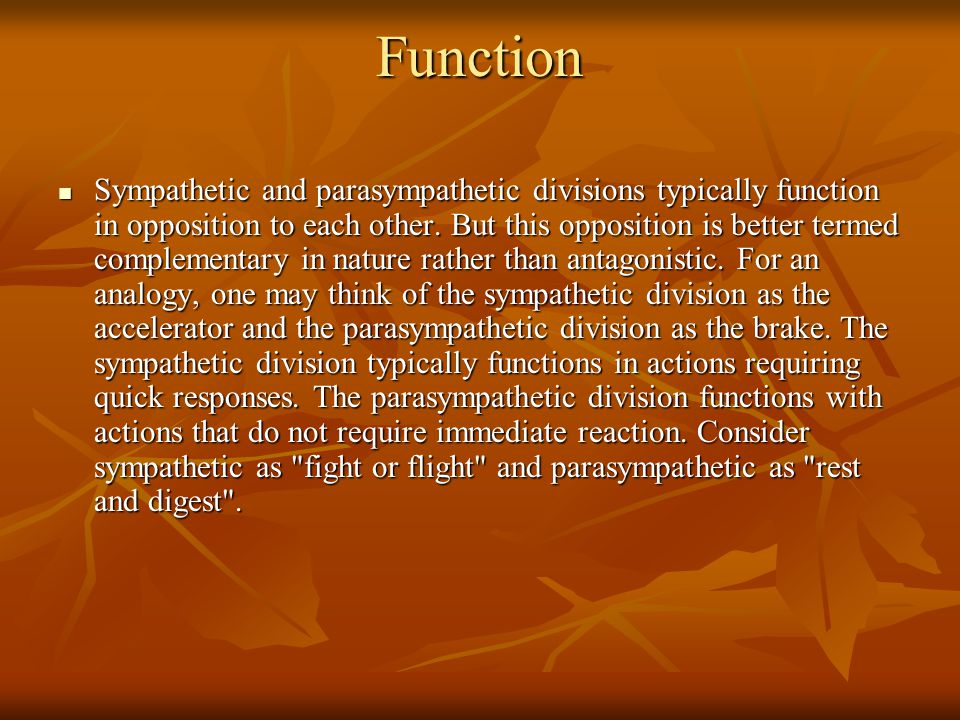 Function Sympathetic and parasympathetic divisions typically function in opposition to each other. But this opposition is better termed complementary