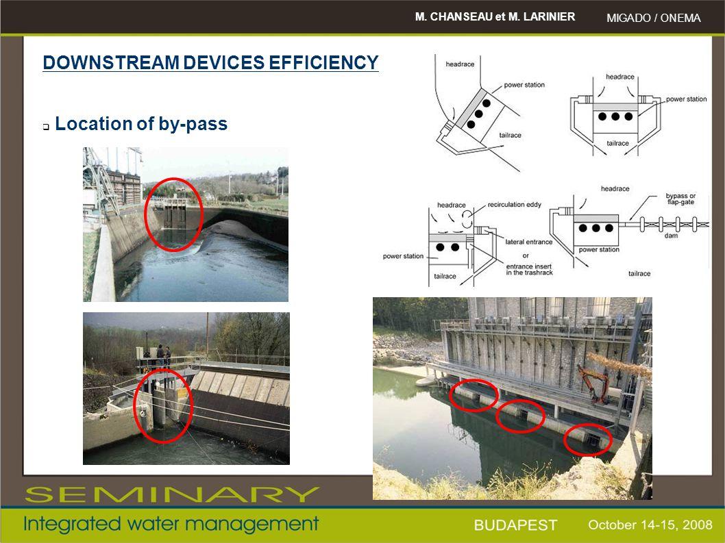 M. CHANSEAU et M. LARINIER MIGADO / ONEMA DOWNSTREAM DEVICES EFFICIENCY  Location of by-pass