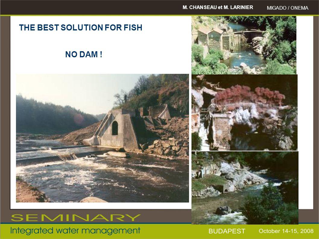 M. CHANSEAU et M. LARINIER MIGADO / ONEMA THE BEST SOLUTION FOR FISH NO DAM !