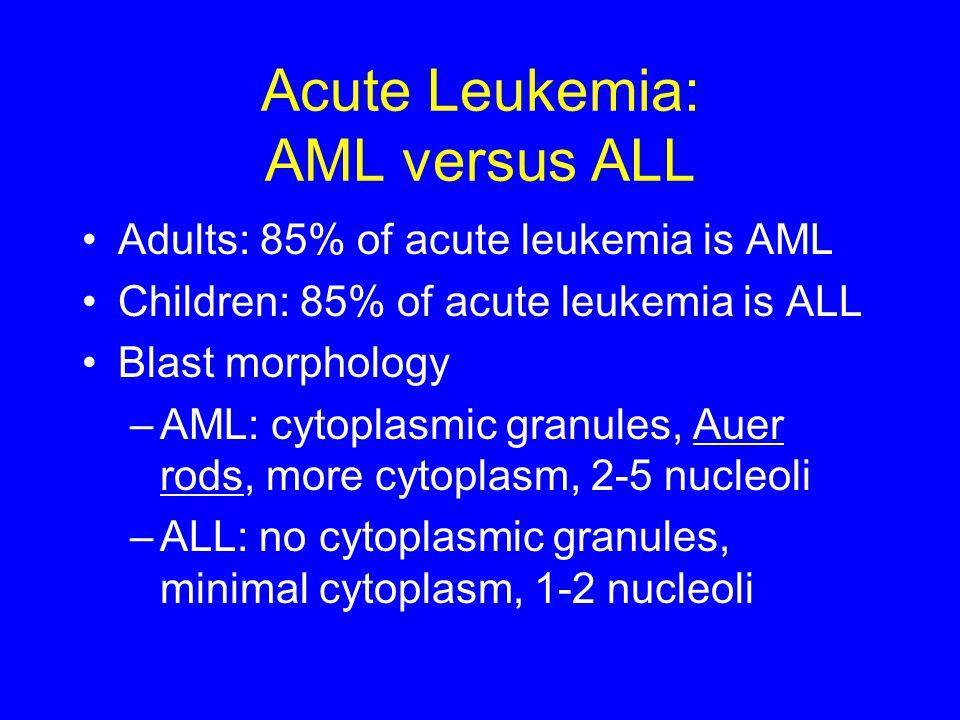 Acute Leukemia: AML versus ALL Adults: 85% of acute leukemia is AML Children: 85% of acute leukemia is ALL Blast morphology –AML: cytoplasmic granules