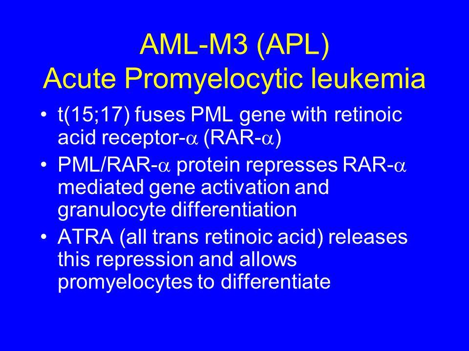 AML-M3 (APL) Acute Promyelocytic leukemia t(15;17) fuses PML gene with retinoic acid receptor-  (RAR-  ) PML/RAR-  protein represses RAR-  mediat