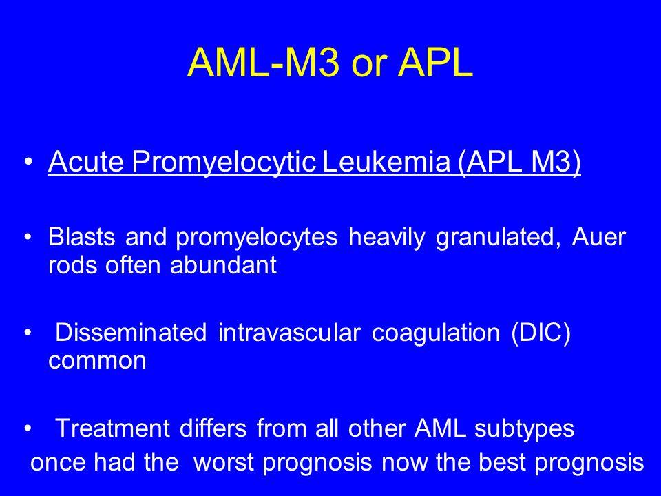 AML-M3 or APL Acute Promyelocytic Leukemia (APL M3) Blasts and promyelocytes heavily granulated, Auer rods often abundant Disseminated intravascular c
