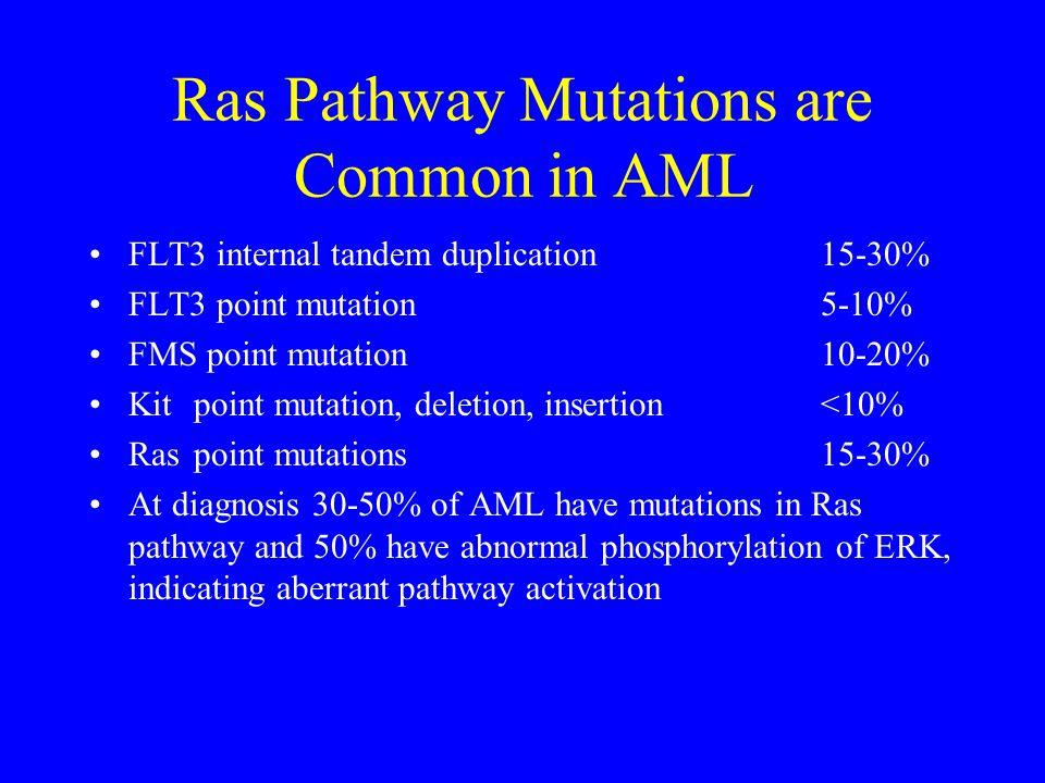 Ras Pathway Mutations are Common in AML FLT3 internal tandem duplication15-30% FLT3 point mutation5-10% FMS point mutation10-20% Kitpoint mutation, de
