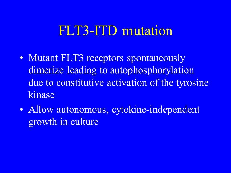 FLT3-ITD mutation Mutant FLT3 receptors spontaneously dimerize leading to autophosphorylation due to constitutive activation of the tyrosine kinase Al