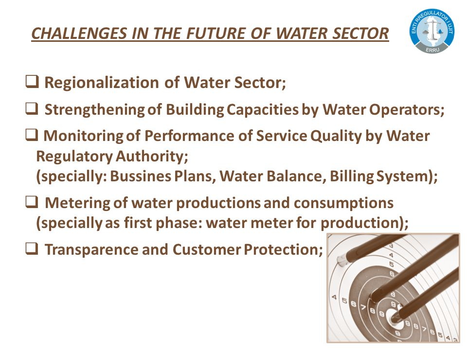  Regionalization of Water Sector ;  Strengthening of Building Capacities by Water Operators;  Monitoring of Performance of Service Quality by Water Regulatory Authority; (specially: Bussines Plans, Water Balance, Billing System);  Metering of water productions and consumptions (specially as first phase: water meter for production);  Transparence and Customer Protection; CHALLENGES IN THE FUTURE OF WATER SECTOR
