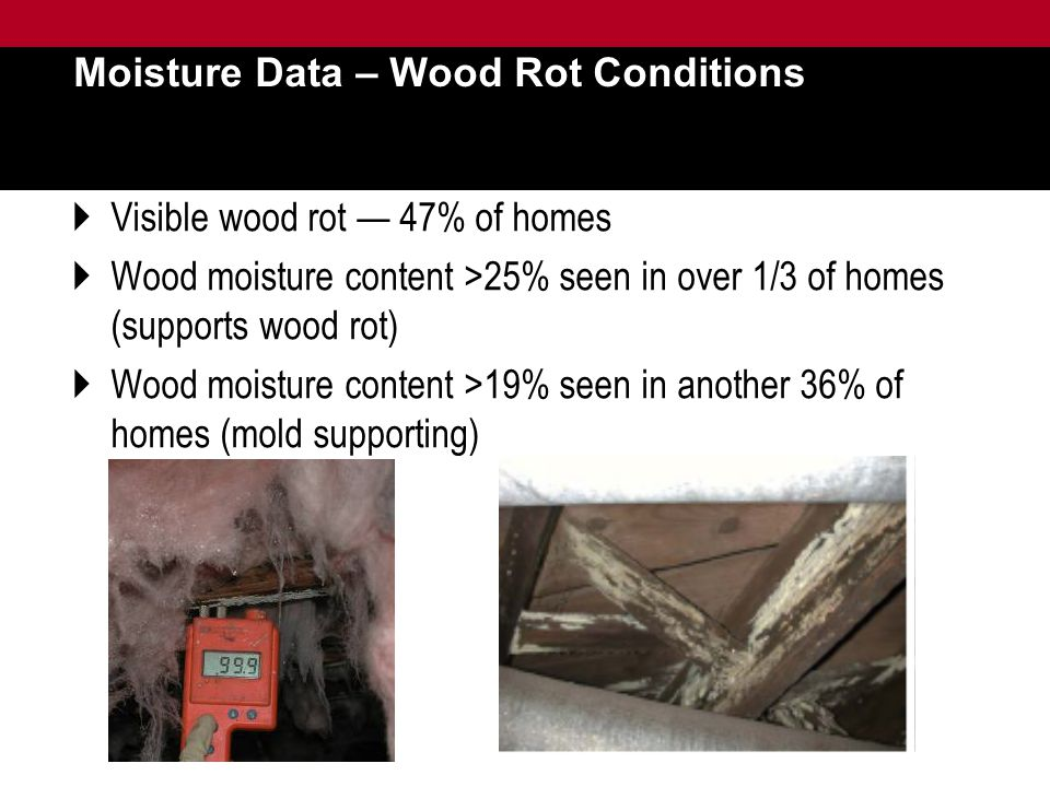 Moisture Data – Wood Rot Conditions  Visible wood rot — 47% of homes  Wood moisture content >25% seen in over 1/3 of homes (supports wood rot)  Wood moisture content >19% seen in another 36% of homes (mold supporting)
