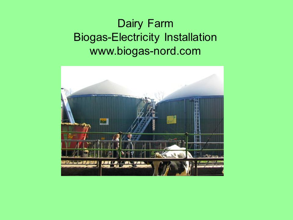 Dairy Farm Biogas-Electricity Installation www.biogas-nord.com