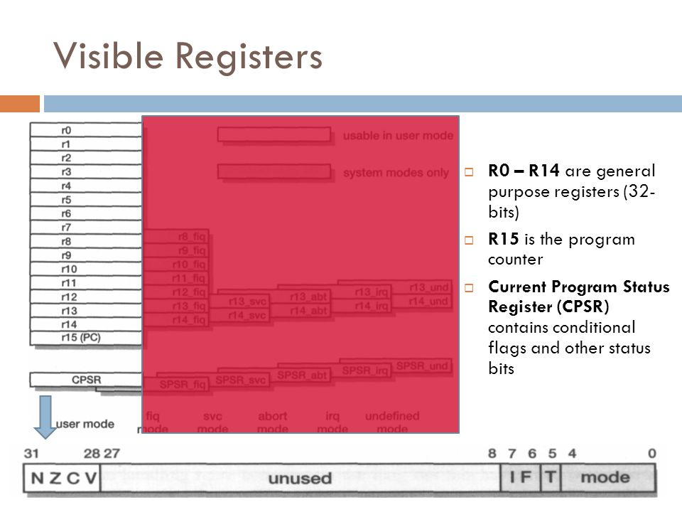 Visible Registers  R0 – R14 are general purpose registers (32- bits)  R15 is the program counter  Current Program Status Register (CPSR) contains conditional flags and other status bits