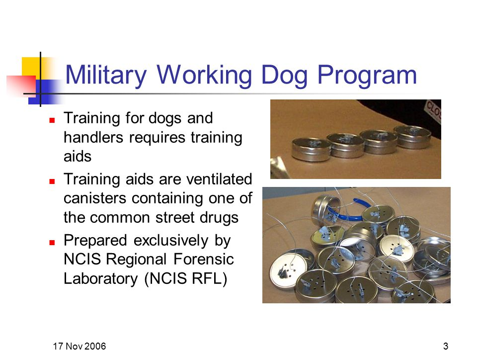 17 Nov 20063 Military Working Dog Program Training for dogs and handlers requires training aids Training aids are ventilated canisters containing one