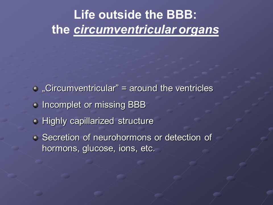 """Life outside the BBB: the circumventricular organs """"Circumventricular"""" = around the ventricles Incomplet or missing BBB Highly capillarized structure"""
