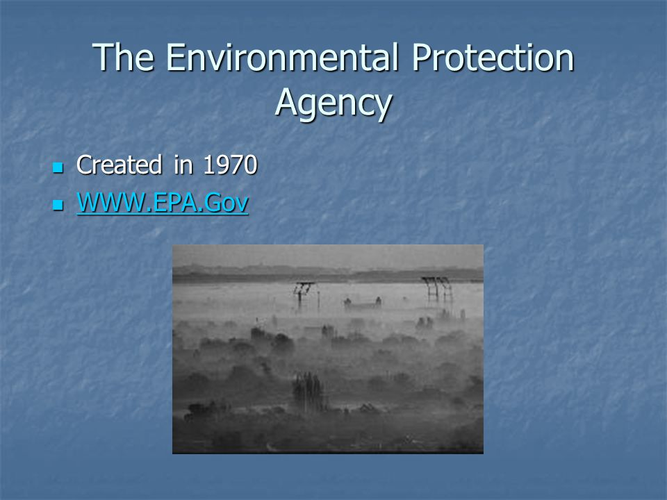 The Environmental Protection Agency Created in 1970 Created in 1970 WWW.EPA.Gov WWW.EPA.Gov WWW.EPA.Gov