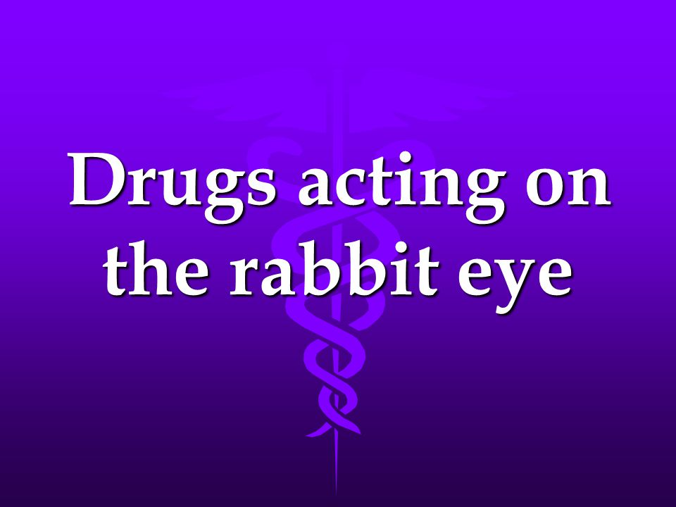 Drugs acting on the rabbit eye
