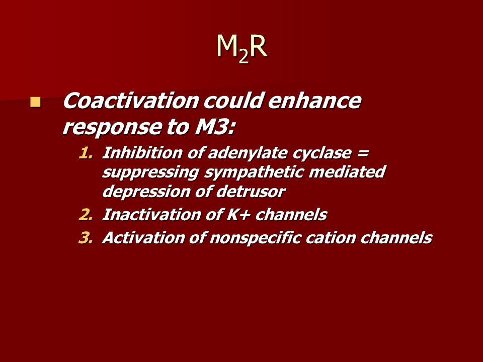 Prejunctional Muscarinic Receptors M1R facilitate Acetylcholine release M1R facilitate Acetylcholine release M2-M4R inhibit release M2-M4R inhibit release