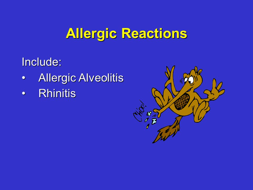 Allergic Reactions Include: Allergic AlveolitisAllergic Alveolitis RhinitisRhinitis