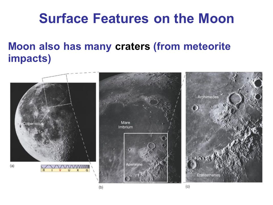 Moon also has many craters (from meteorite impacts) Surface Features on the Moon