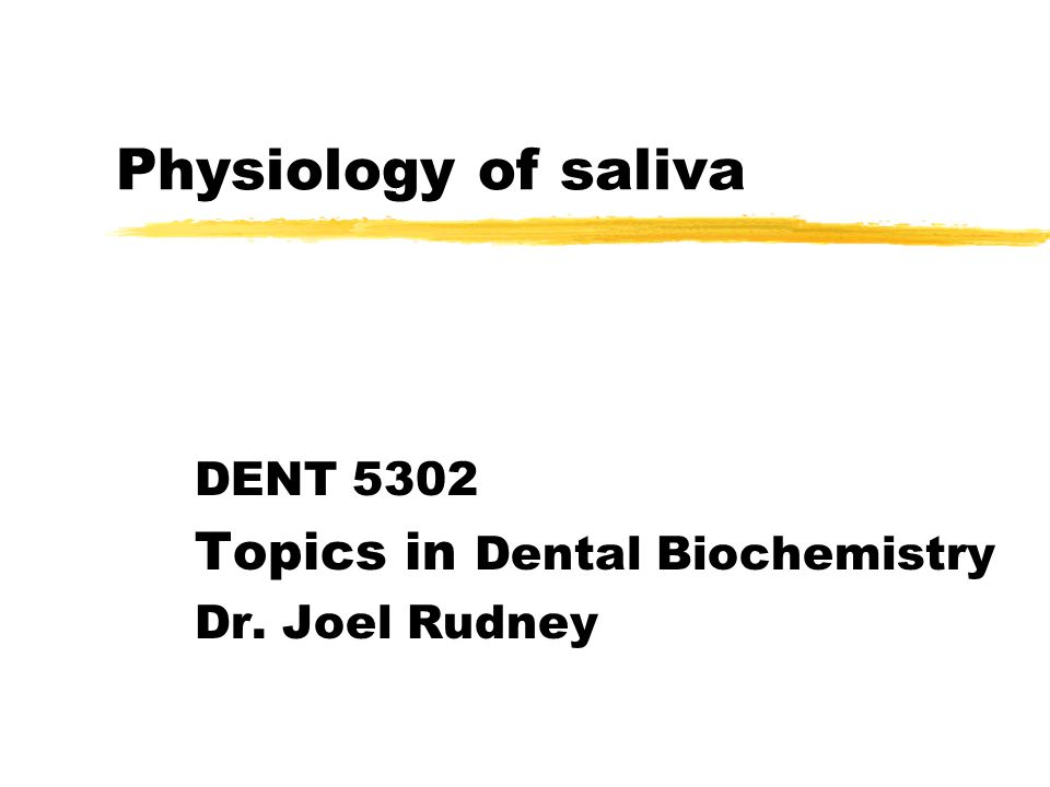 Physiology of saliva DENT 5302 Topics in Dental Biochemistry Dr. Joel Rudney