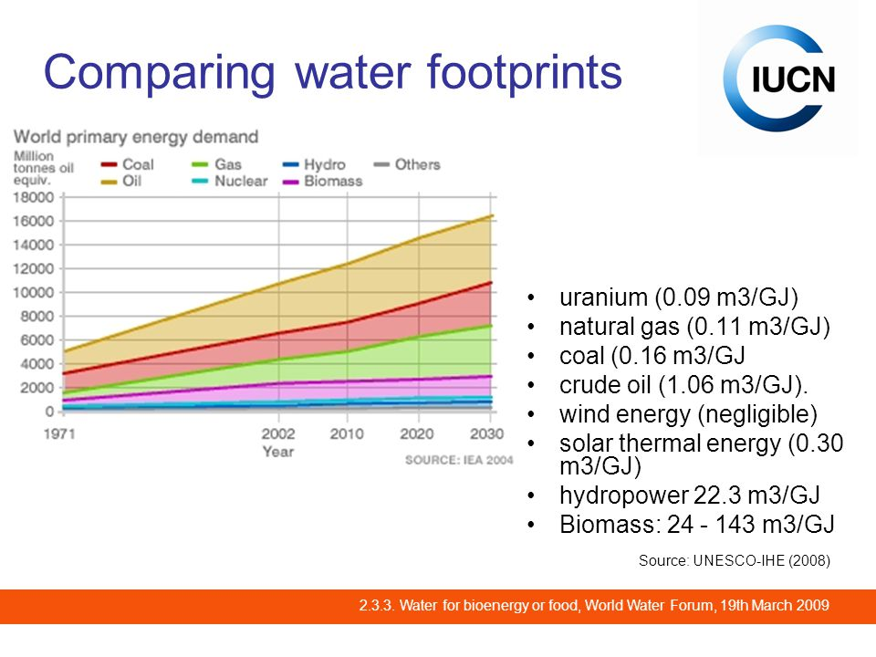2.3.3. Water for bioenergy or food, World Water Forum, 19th March 2009 Different pathways