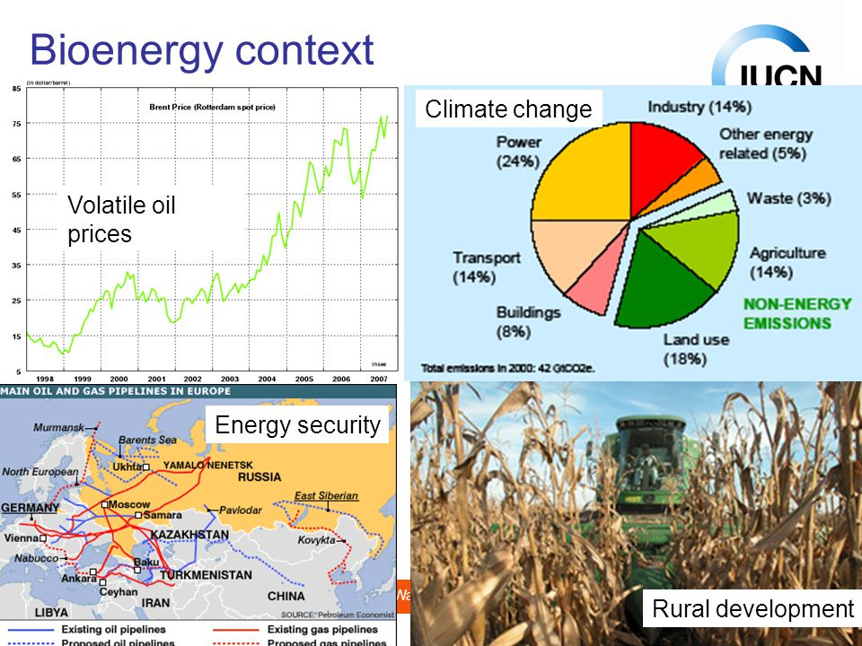 2.3.3.Water for bioenergy or food, World Water Forum, 19th March 2009 Real bioenergy context.