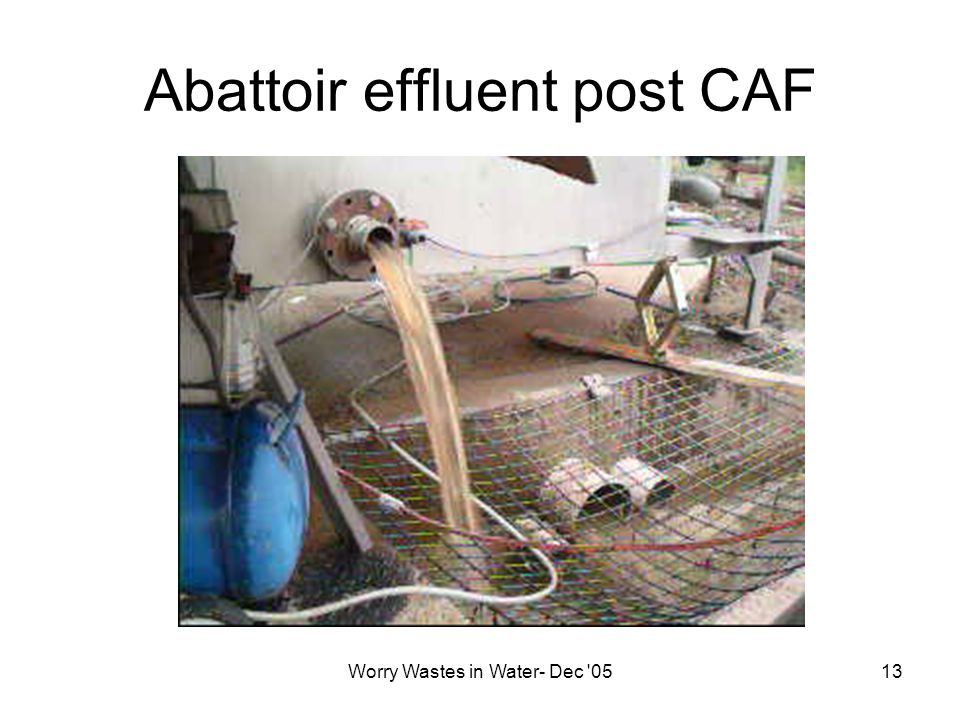 Worry Wastes in Water- Dec 0513 Abattoir effluent post CAF