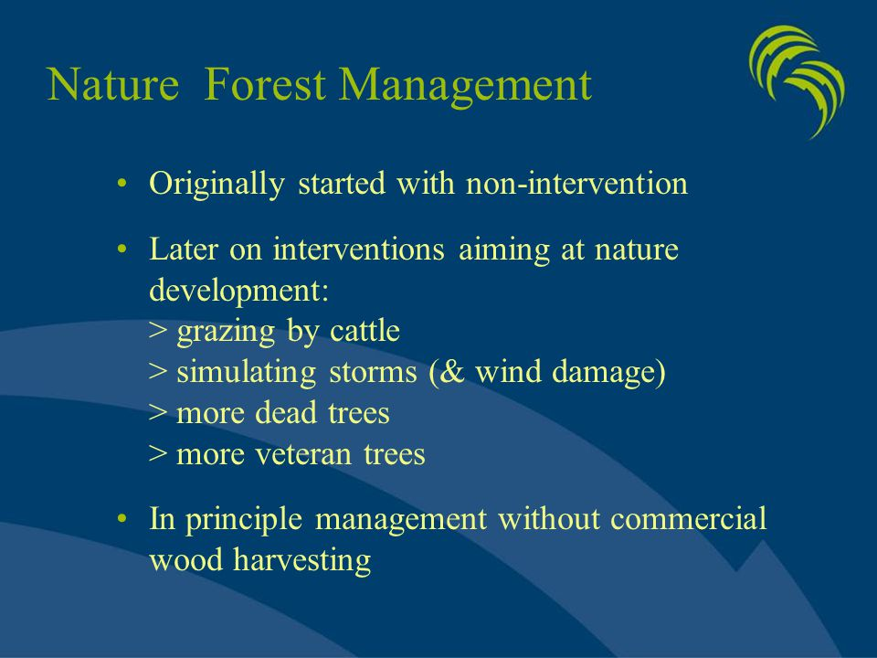 Nature Forest Management Originally started with non-intervention Later on interventions aiming at nature development: > grazing by cattle > simulatin