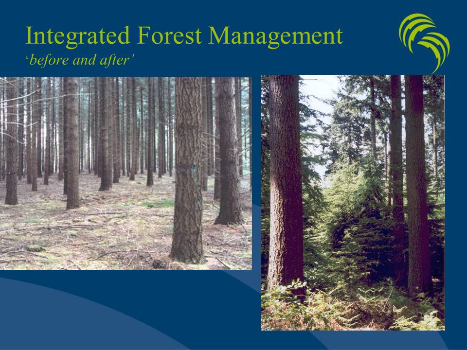 Integrated Forest Management ' before and after'
