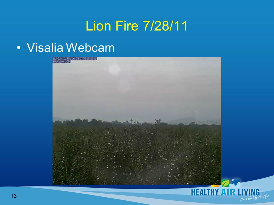 Lion Fire 7/28/11 13 Visalia Webcam