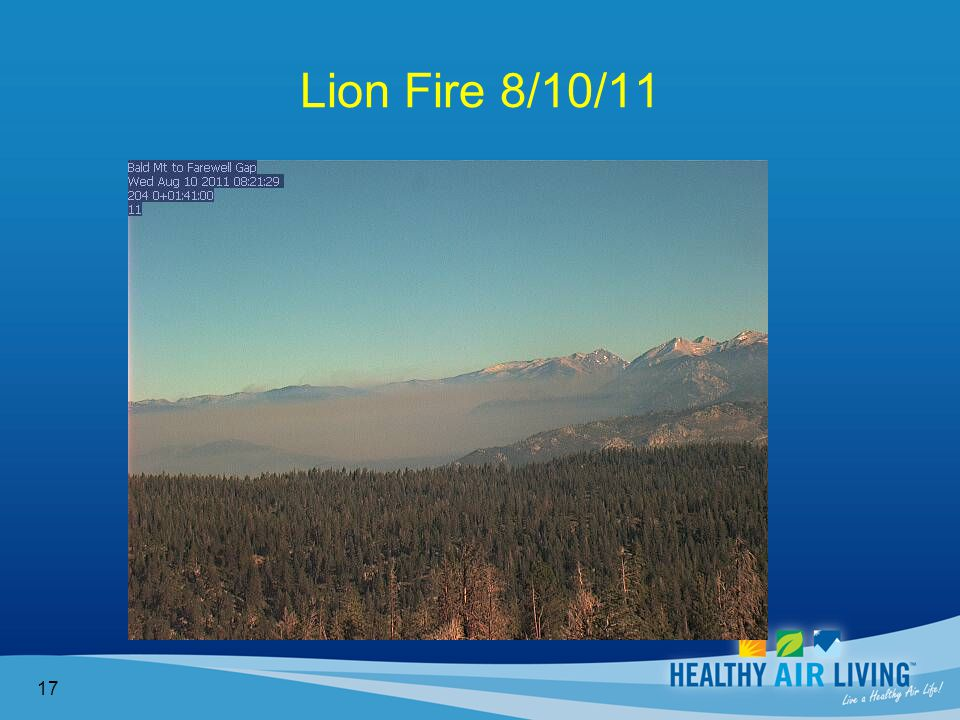 Lion Fire 8/10/11 17