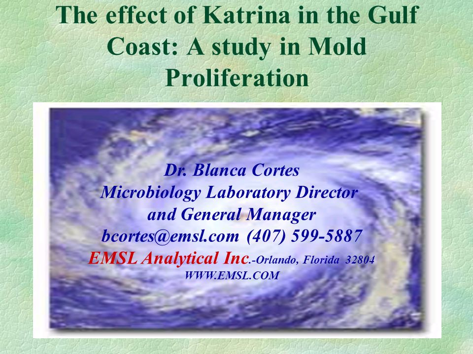 The effect of Katrina in the Gulf Coast: A study in Mold Proliferation Dr. Blanca Cortes Microbiology Laboratory Director and General Manager bcortes@
