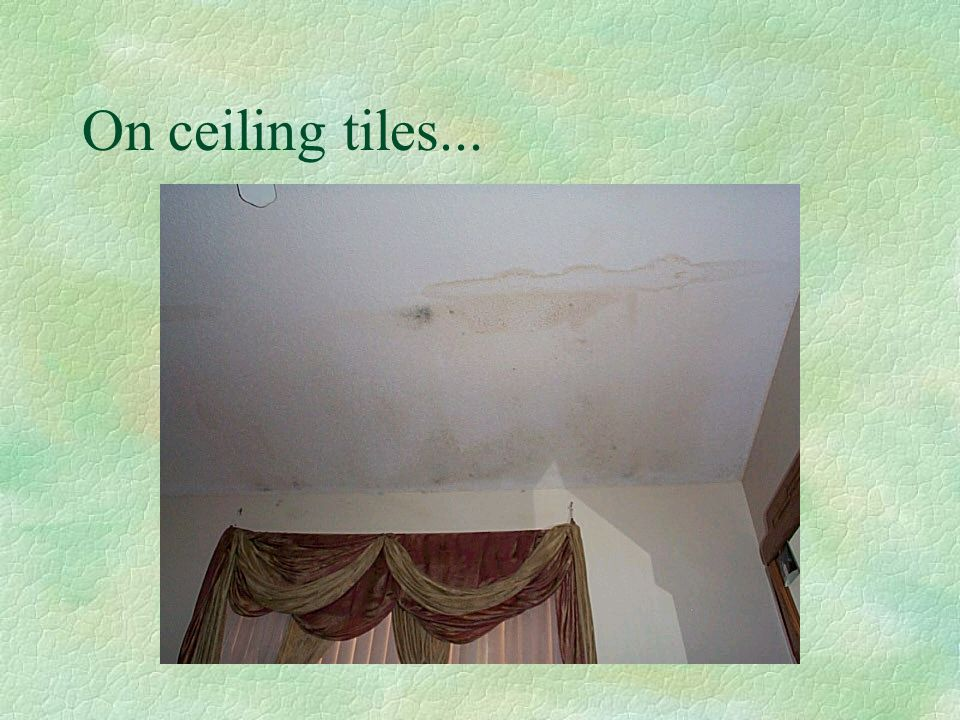 On ceiling tiles...