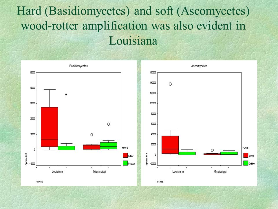 Hard (Basidiomycetes) and soft (Ascomycetes) wood-rotter amplification was also evident in Louisiana