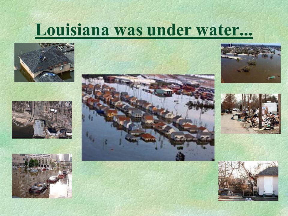 Genera typically associated with water damage conditions §Chaetomium §Epicoccum §Fusarium §Stachybotrys §Ulocladium