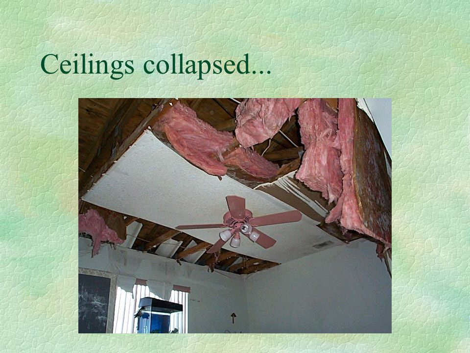 Water intrusion was evident...
