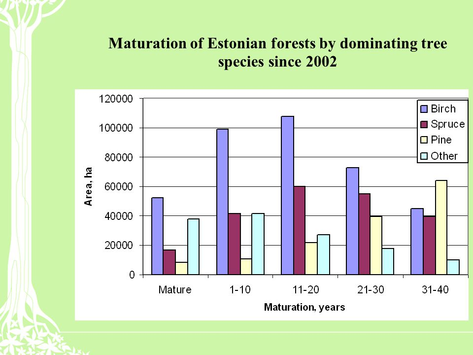Maturation of Estonian forests by dominating tree species since 2002