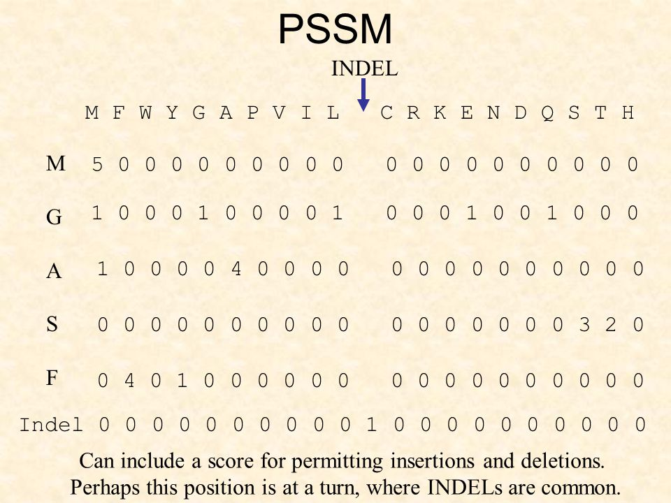 BM1M2M3M4E Match State with no Indels MSGL MTNL Arrow indicates transition probability.