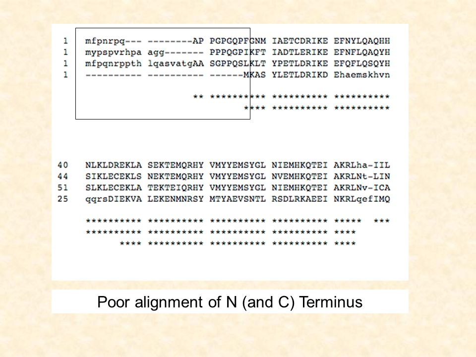 The bottom line of states are the main states (M) These model the columns of the alignment The second row of diamond shaped states are called the insert states (I) These are used to model the highly variable regions in the alignment.