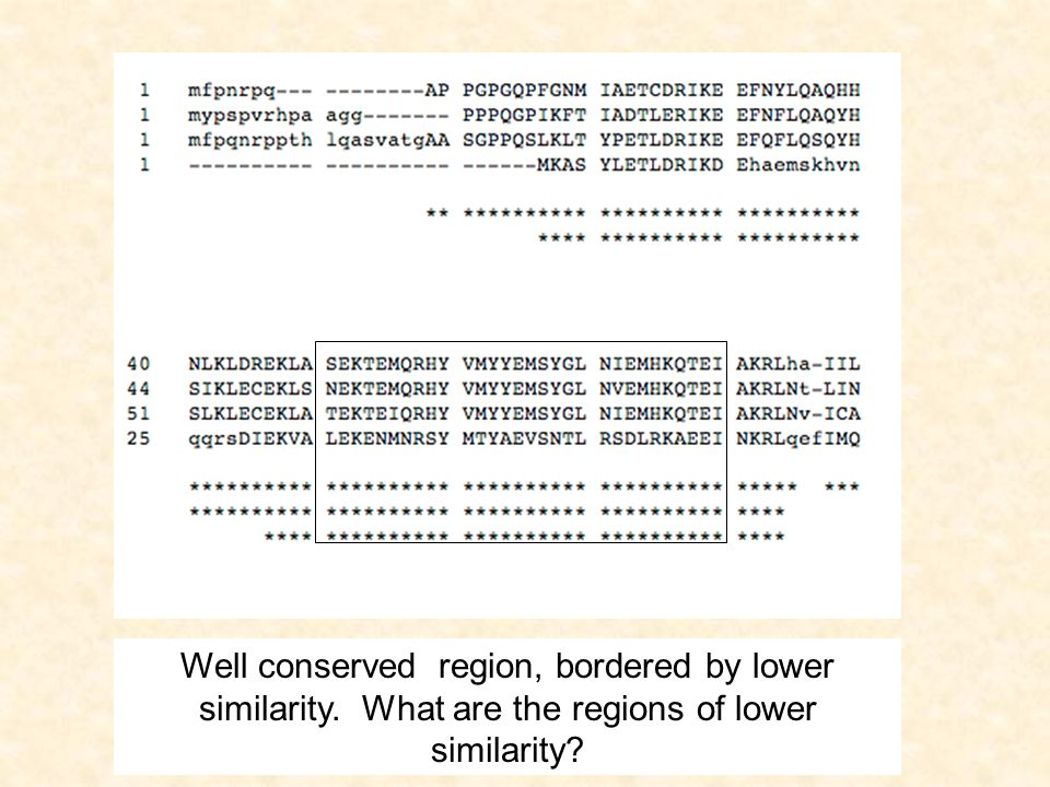 Hidden Markov Models Pair-wise methods rely on direct comparisons between two sequences.