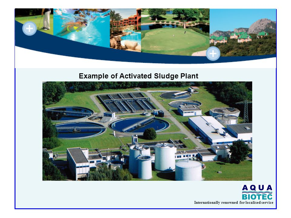 Internationally renowned for localised service Example of Activated Sludge Plant