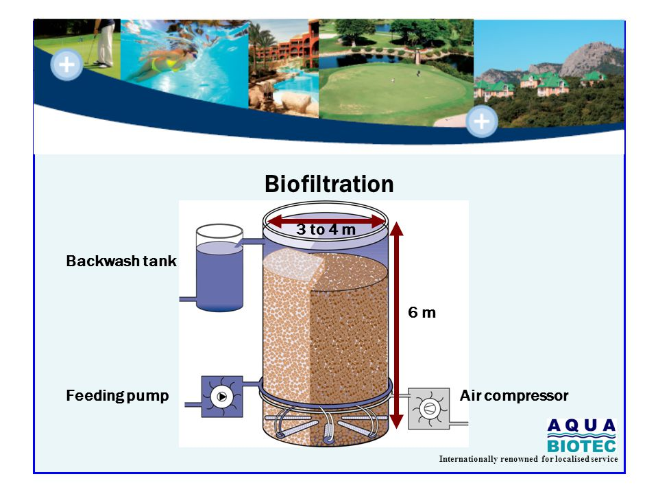 Internationally renowned for localised service Biofiltration Backwash tank Feeding pumpAir compressor 3 to 4 m 6 m