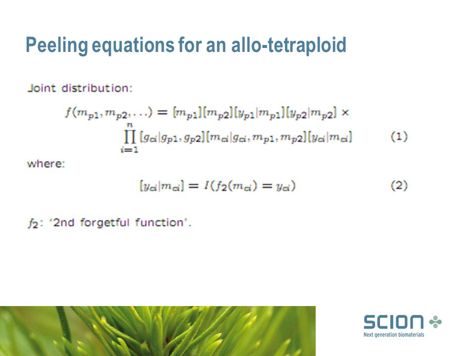 Peeling equations for an allo-tetraploid