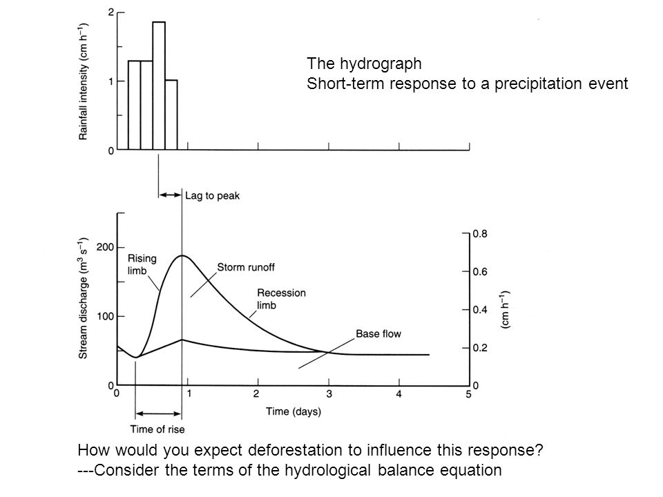 The hydrograph Short-term response to a precipitation event How would you expect deforestation to influence this response.
