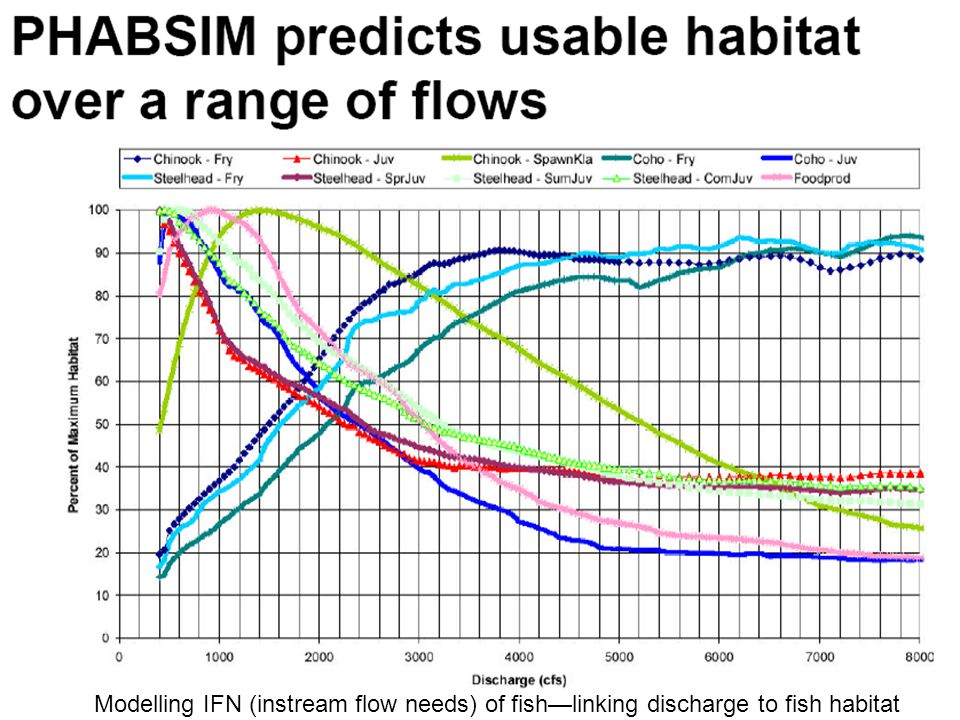 Modelling IFN (instream flow needs) of fish—linking discharge to fish habitat